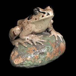 Great Barred Frog Figurine