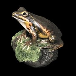 Northern Banjo Frog Figurine