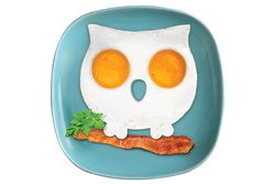 Owl Egg Ring - have a hoot and cook up a storm.